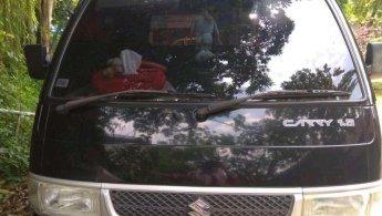 Suzuki  Carry PickUp 2011